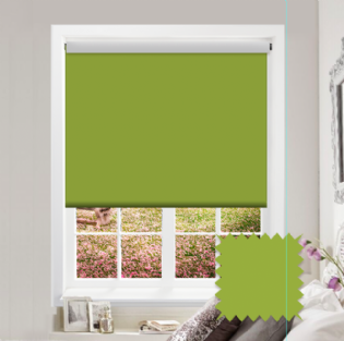 Green Roller Blind - Bahamas Lime